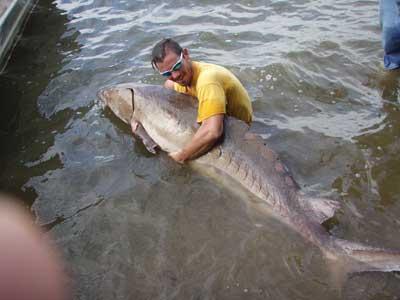 Vcu news for James river fishing
