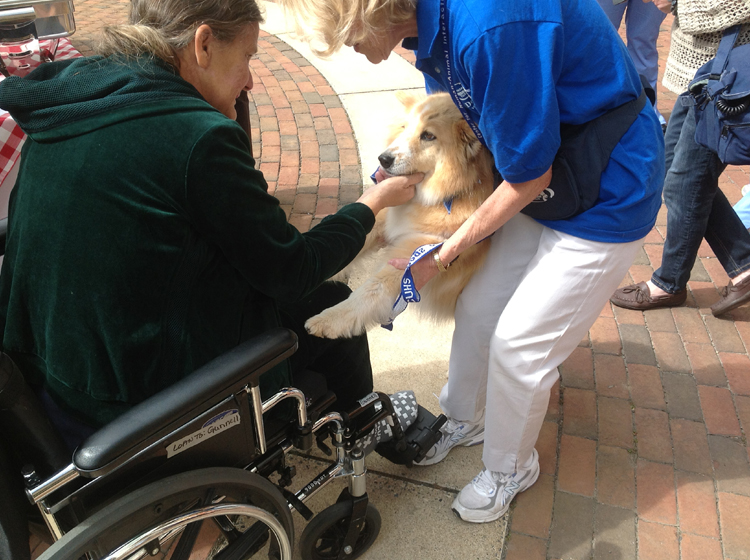 Dogs on Call volunteers Dianne Butler and Bailey, a corgi border collie, say hello to a VCU Medical Center patient.
